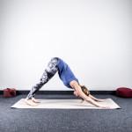 yoga-sonnengruss-erlernen-adho-mukha-savasana-herabschauende-hund