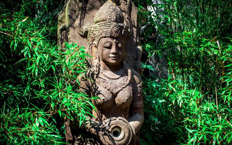 ayurveda-dosha